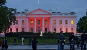 Pink lights illuminate the north side of